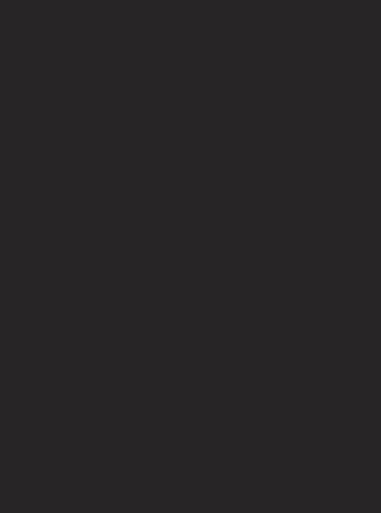 Napoleon Italy